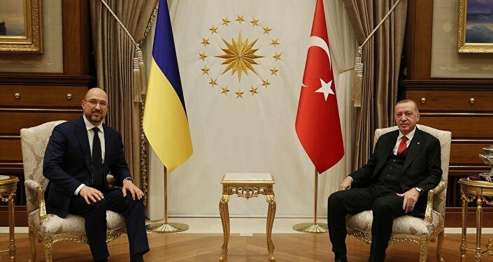 Ukrayna Başbakanı Denis Şmıgal, Cumhurbaşkanı Recep Tayyip Erdoğan