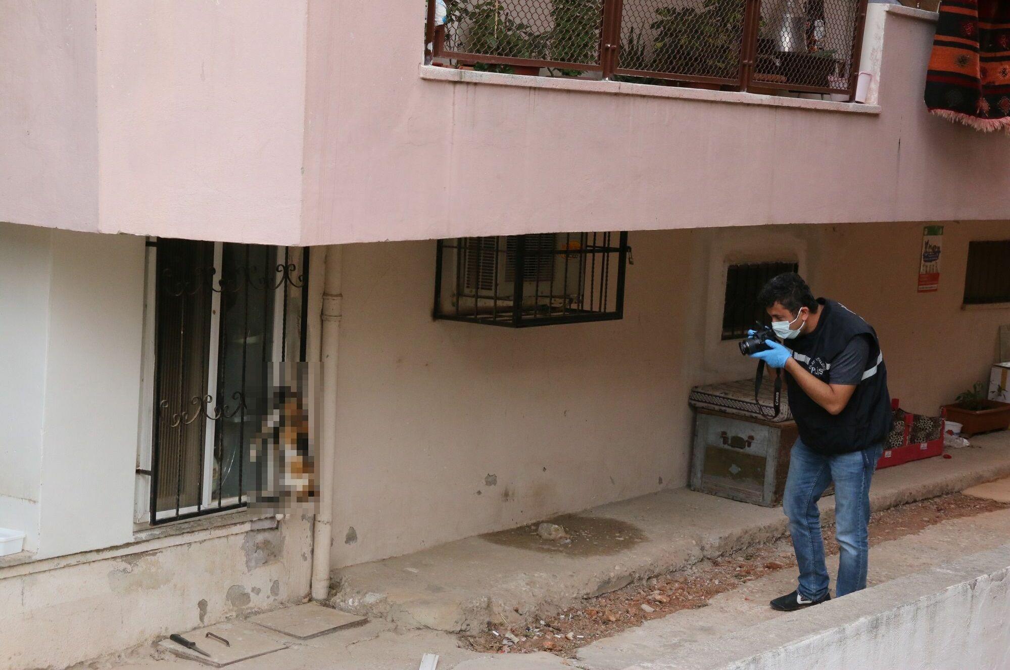 Kedi, polis ekiplerinin çalışmasının ardından olay yerinden alındı