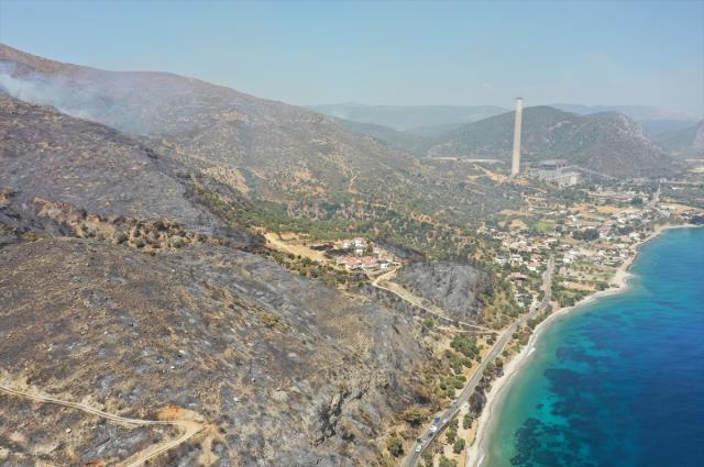 Muğla Büyükşehir Belediyesi yangın bölgelerindeki son durumu paylaştı! Çökertme'de 15 bin hektar kül oldu