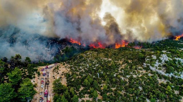 Muğla Büyükşehir Belediyesi yangın bölgelerindeki son durumu açıkladı! Çökertme'de 15 bin hektar kül oldu