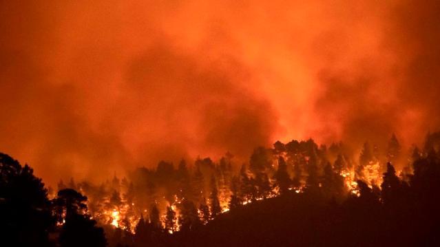 Yunanistan'da yangın söndürme çalışmalalarına ordu da katılacak